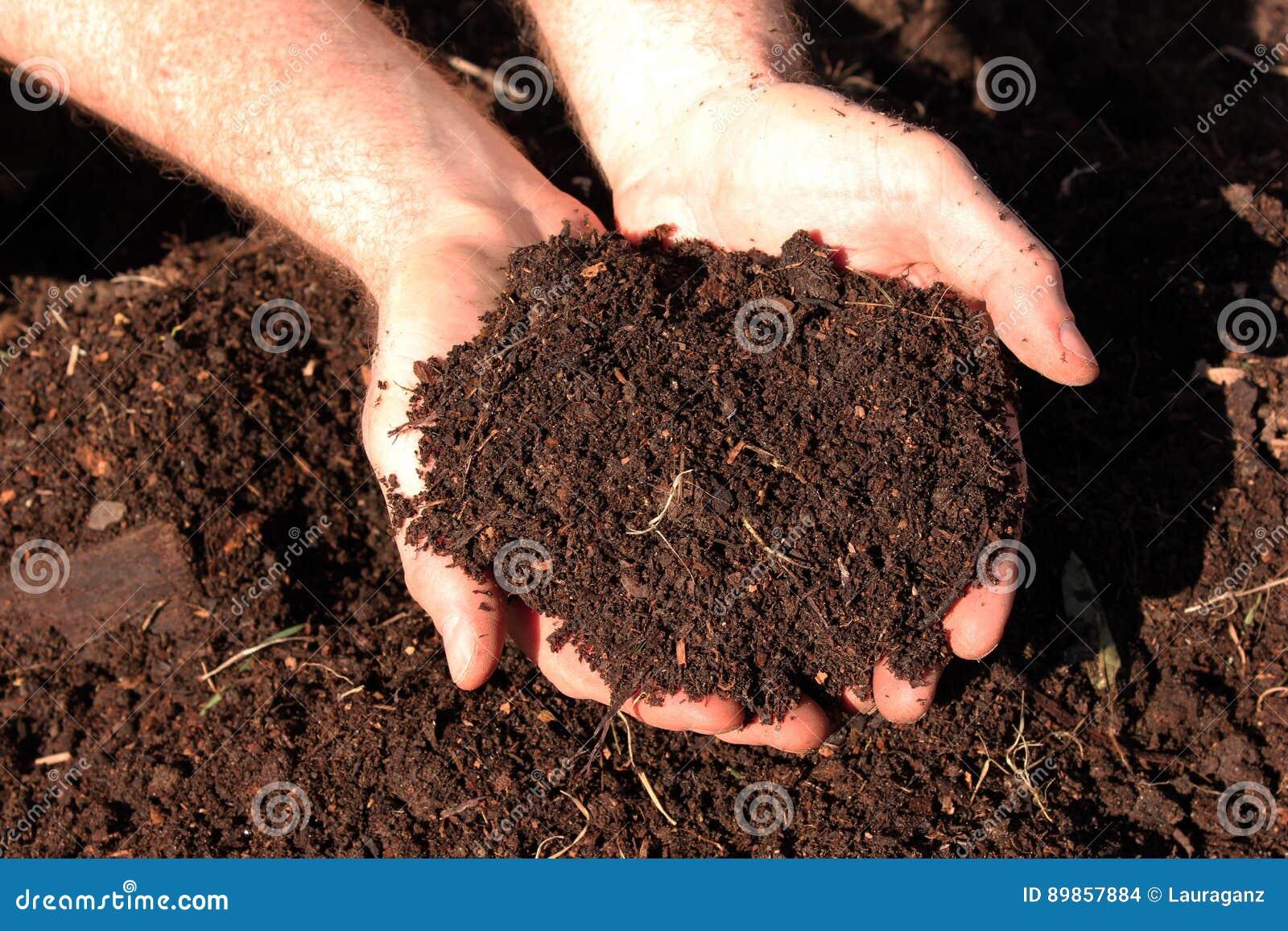 Compost d engrais de cheval