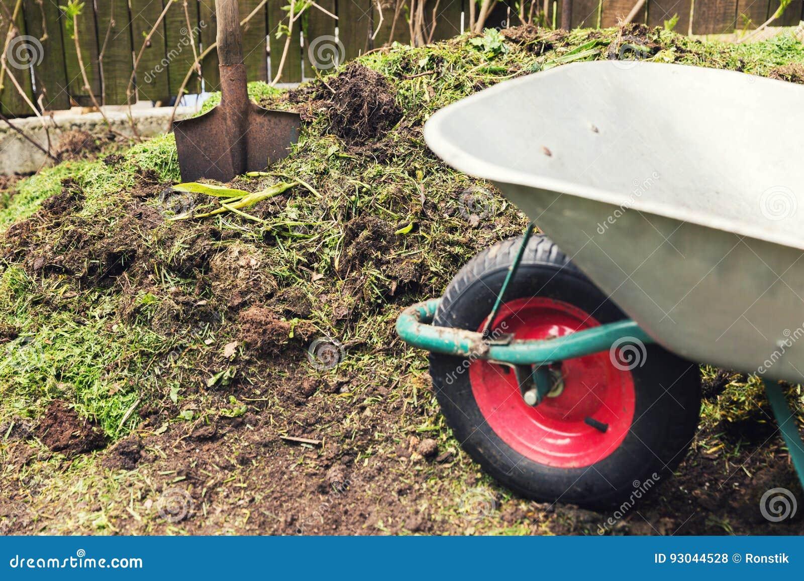 Compost - garden plant fertilizer