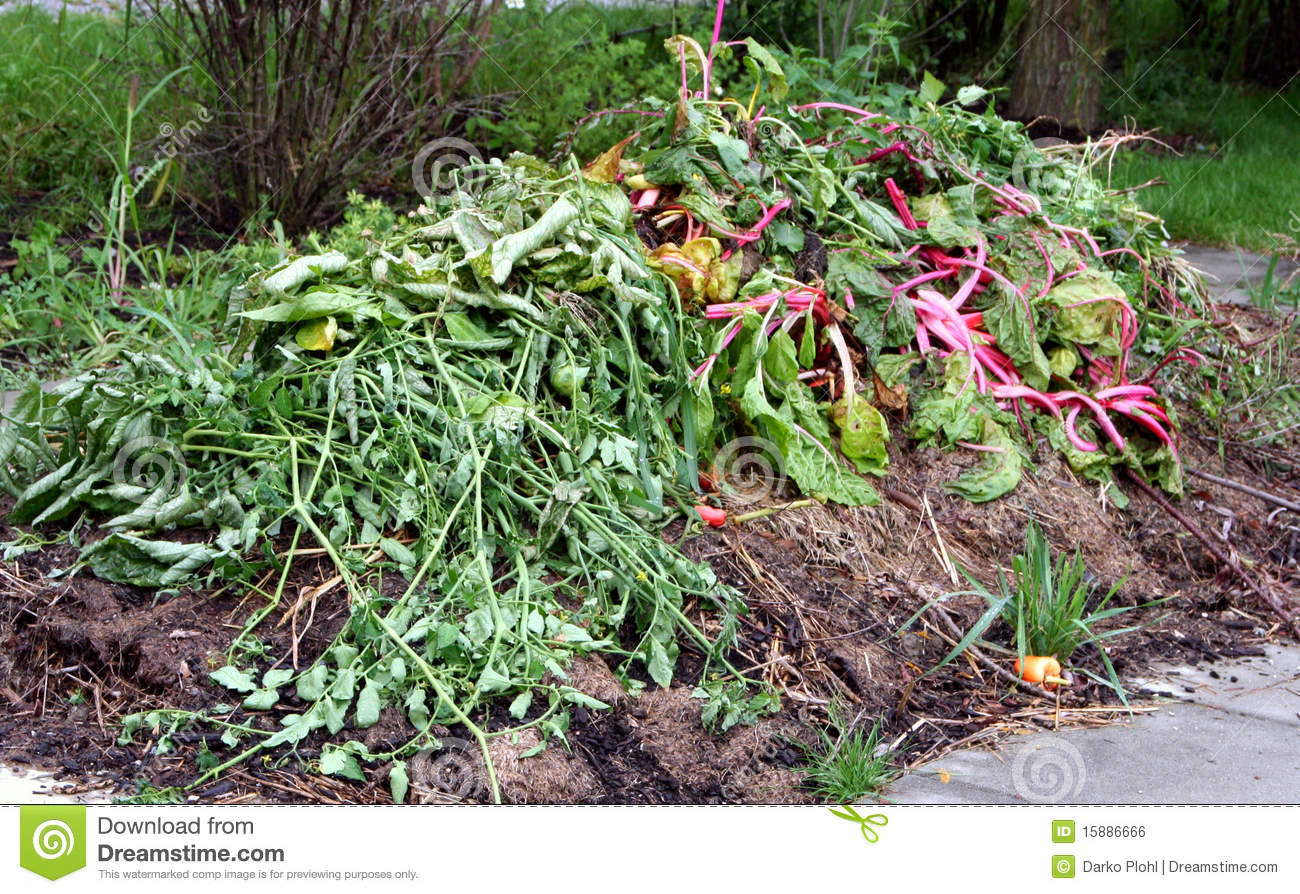 Raised Bed Gardening Plans Compost Organic Material Royalty Free Stock Image - Image ...