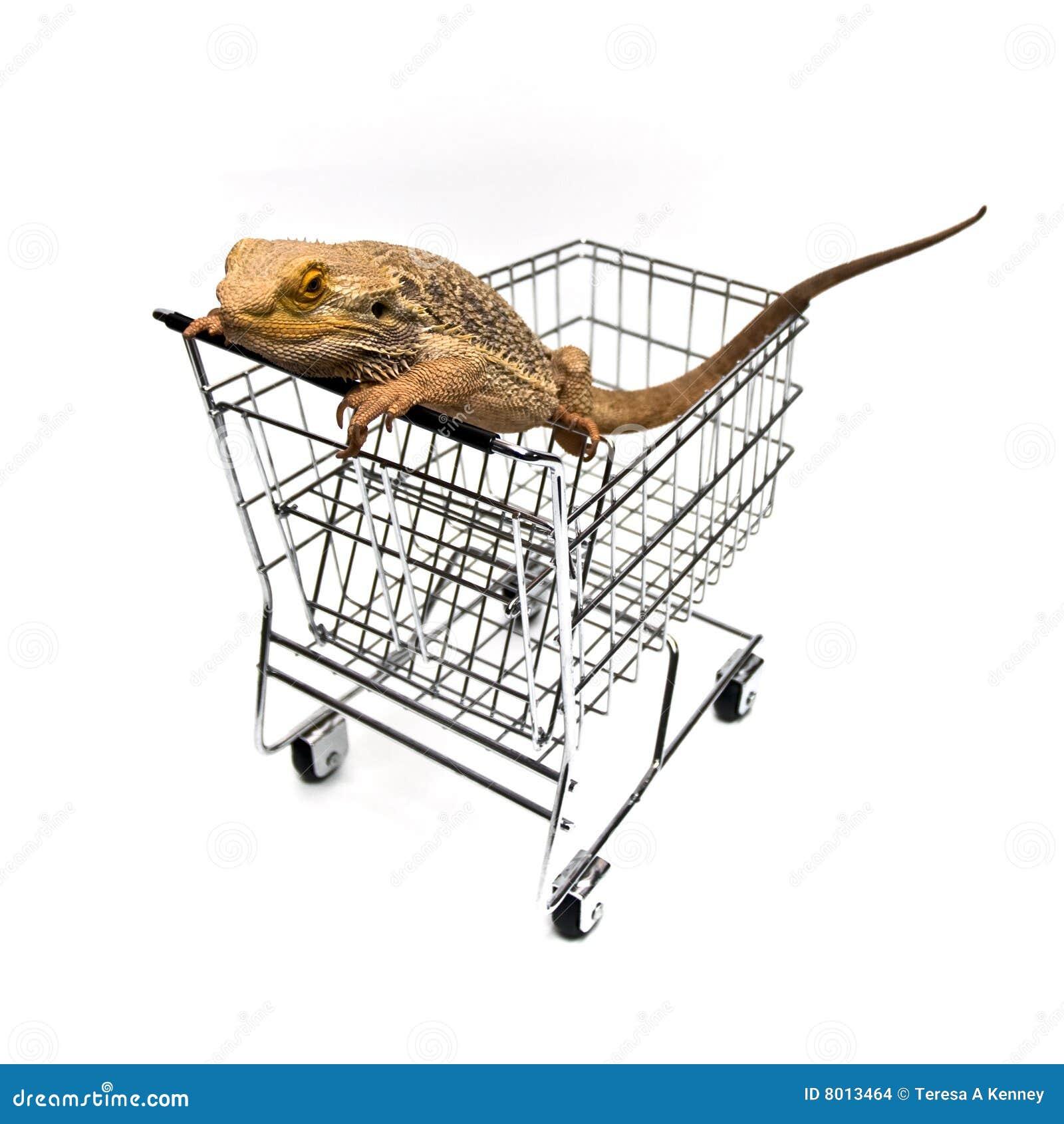 Compra do animal de estimação