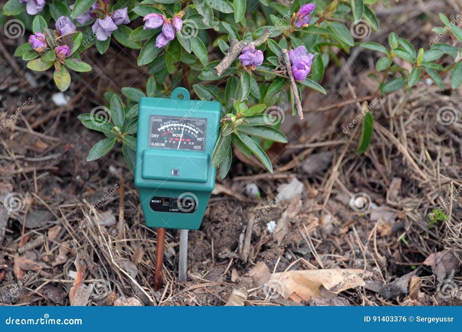 Compteur pH dans le jardin