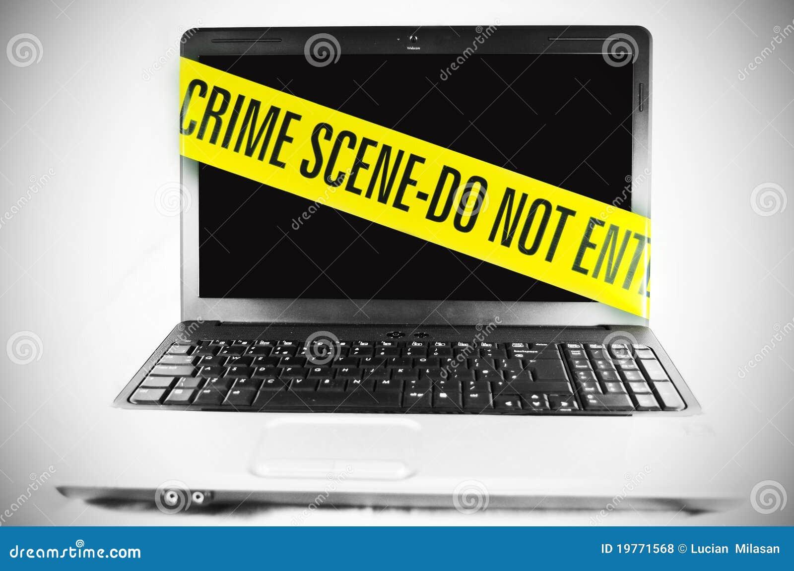 credit card fraud essay