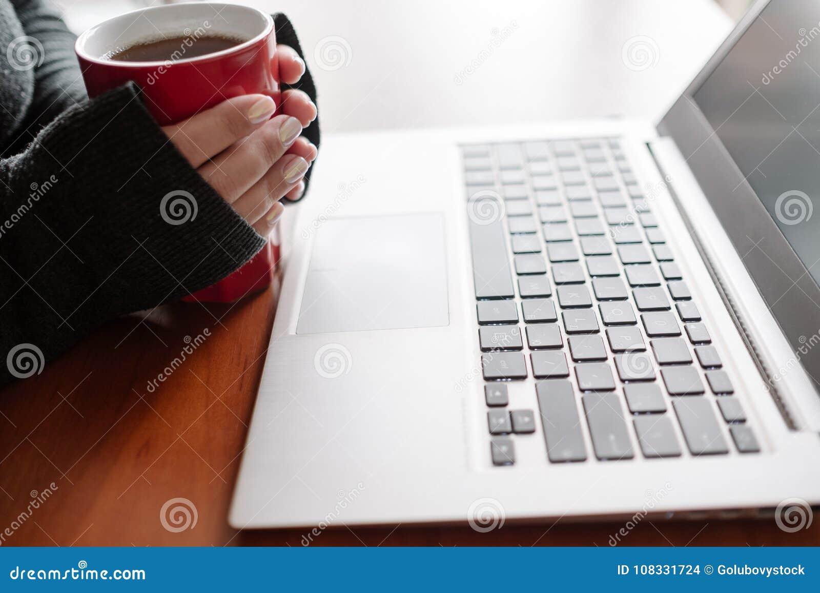 Computer portatile sociale della donna di media di invio di blogger