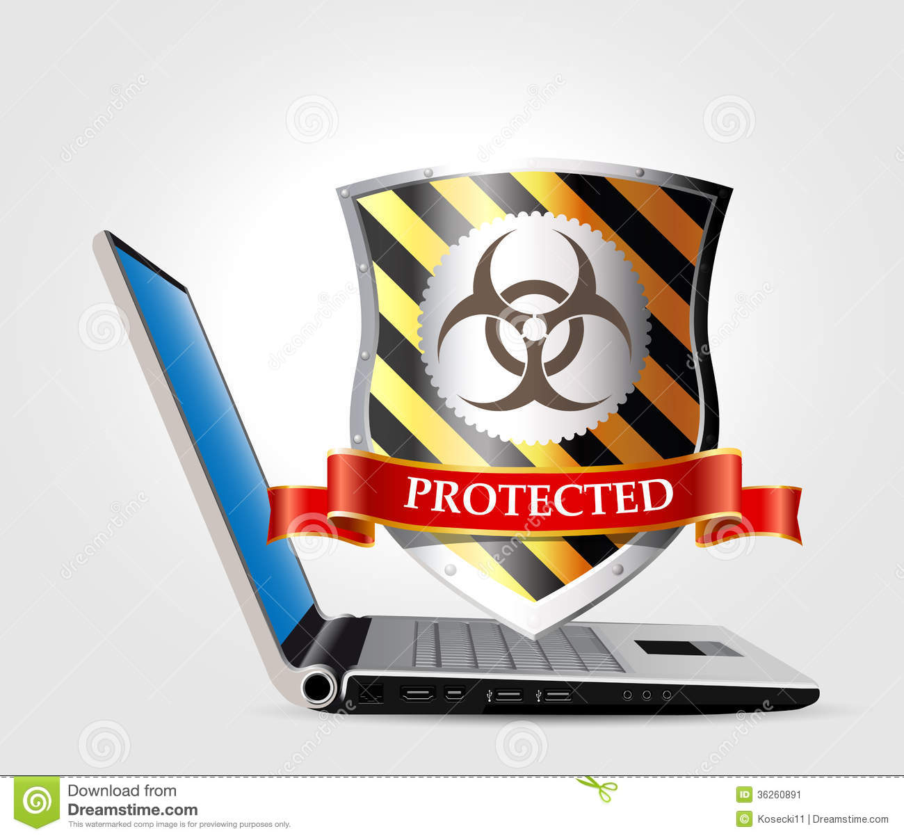Computer security - database and Internet security.