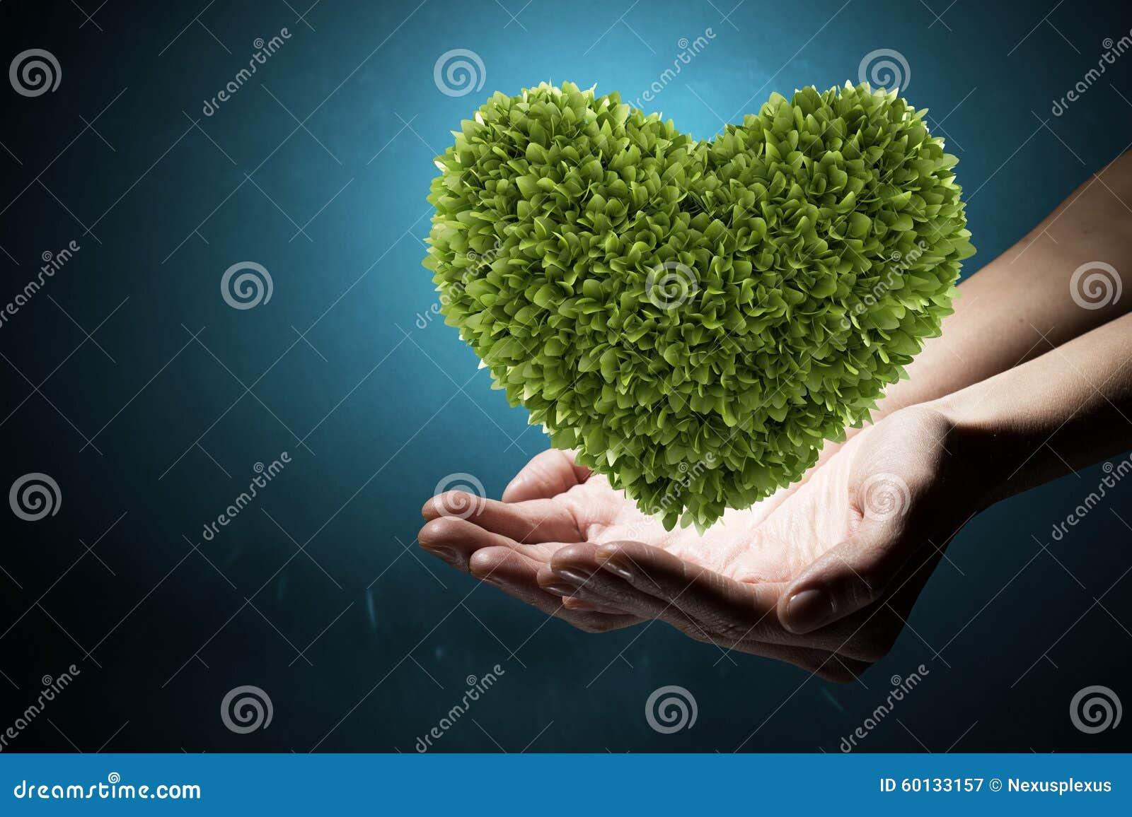 Con Amor A La Naturaleza Imagen De Archivo Imagen De Planta 60133157