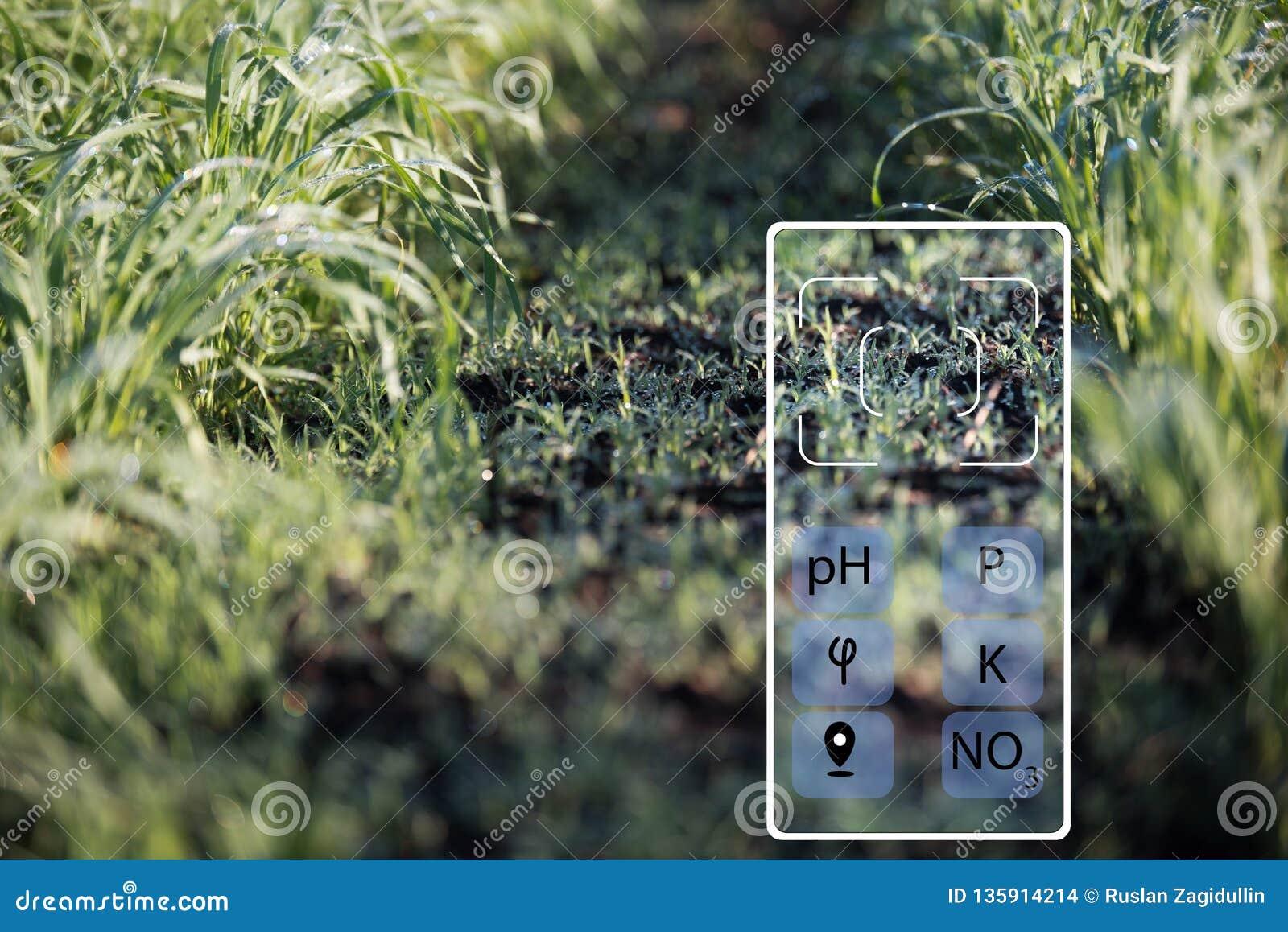 Con la ayuda de un smartphone determinar el estado de la acidez del suelo, humedad, fósforo, potasio, nitrógeno del nitrato