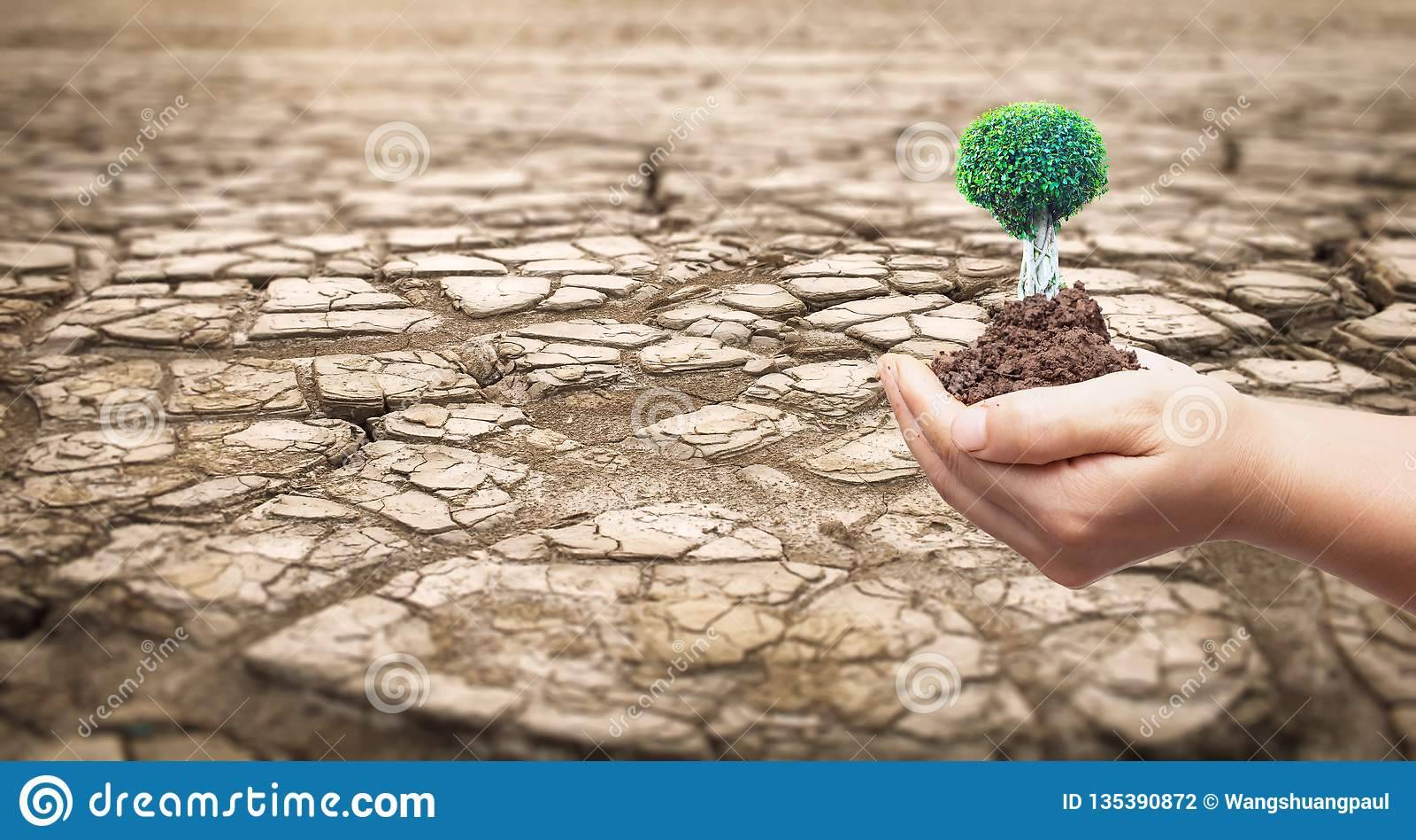 Conceito ambiental: Parte de uma área enorme do sofrimento da terra secada da seca