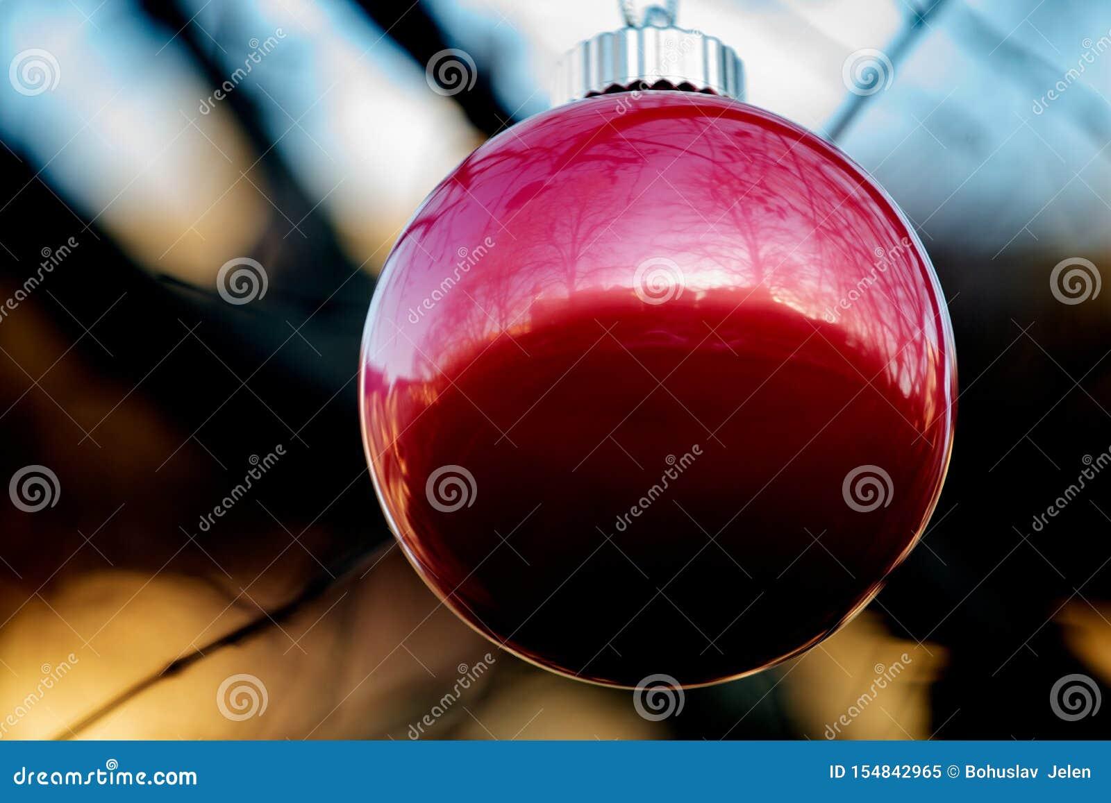 Conceito da decoração do feriado de inverno: Árvore despida sem folhas decoradas com as bolas do vintage do Natal