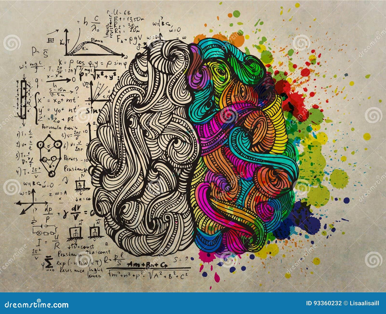Conceito da garatuja do cérebro sobre o lado direito criativo e o lado esquerdo lógico