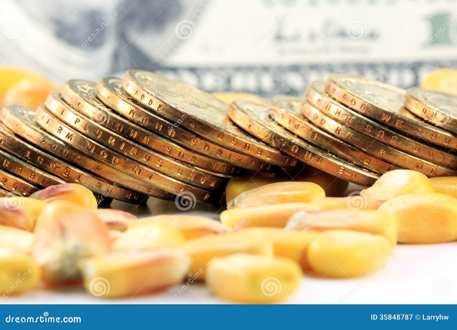 Conceito da troca de mercadoria - moeda dos E.U. das moedas de ouro com milho amarelo