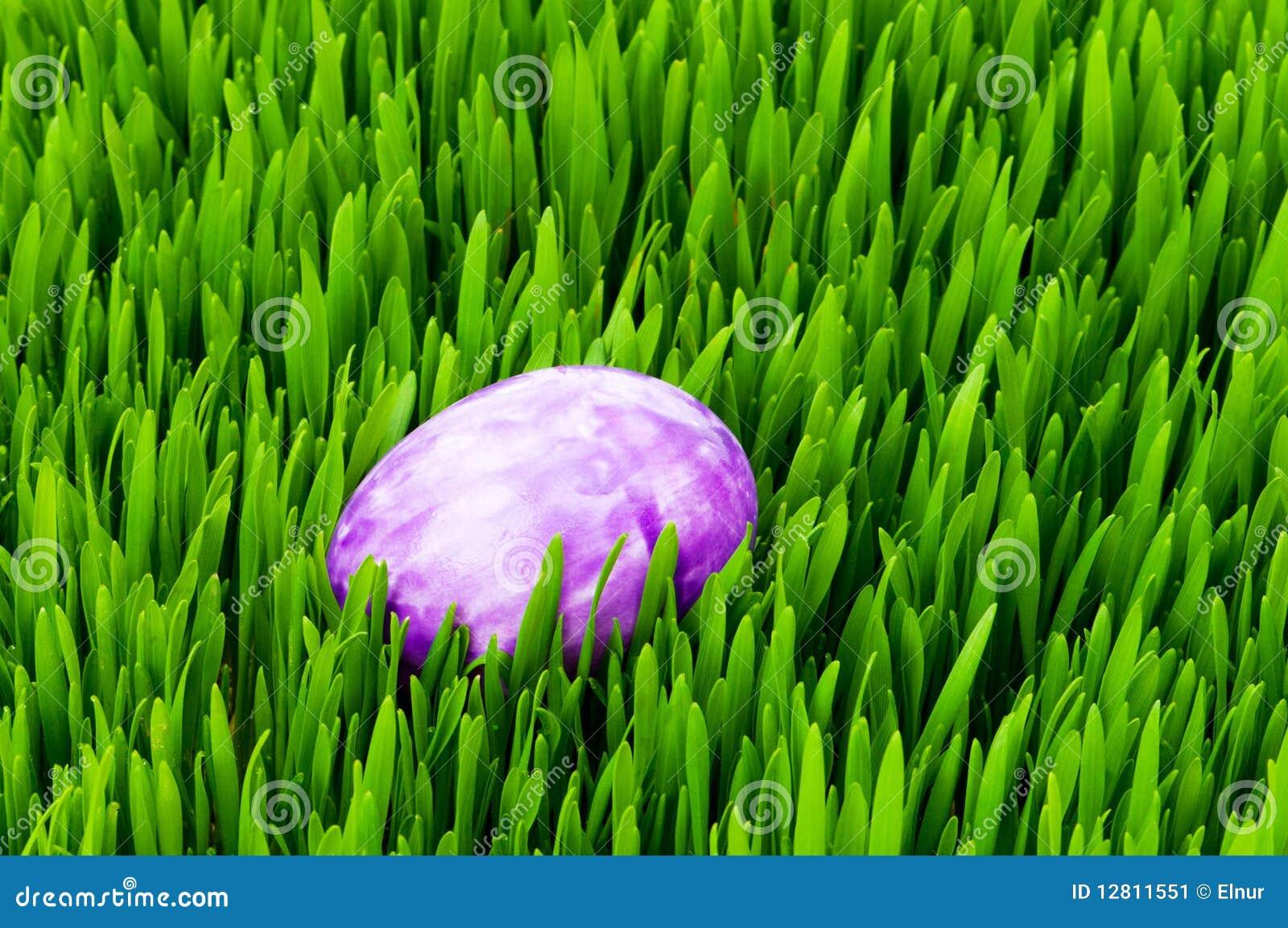 Conceito de Easter - ovos coloridos na grama