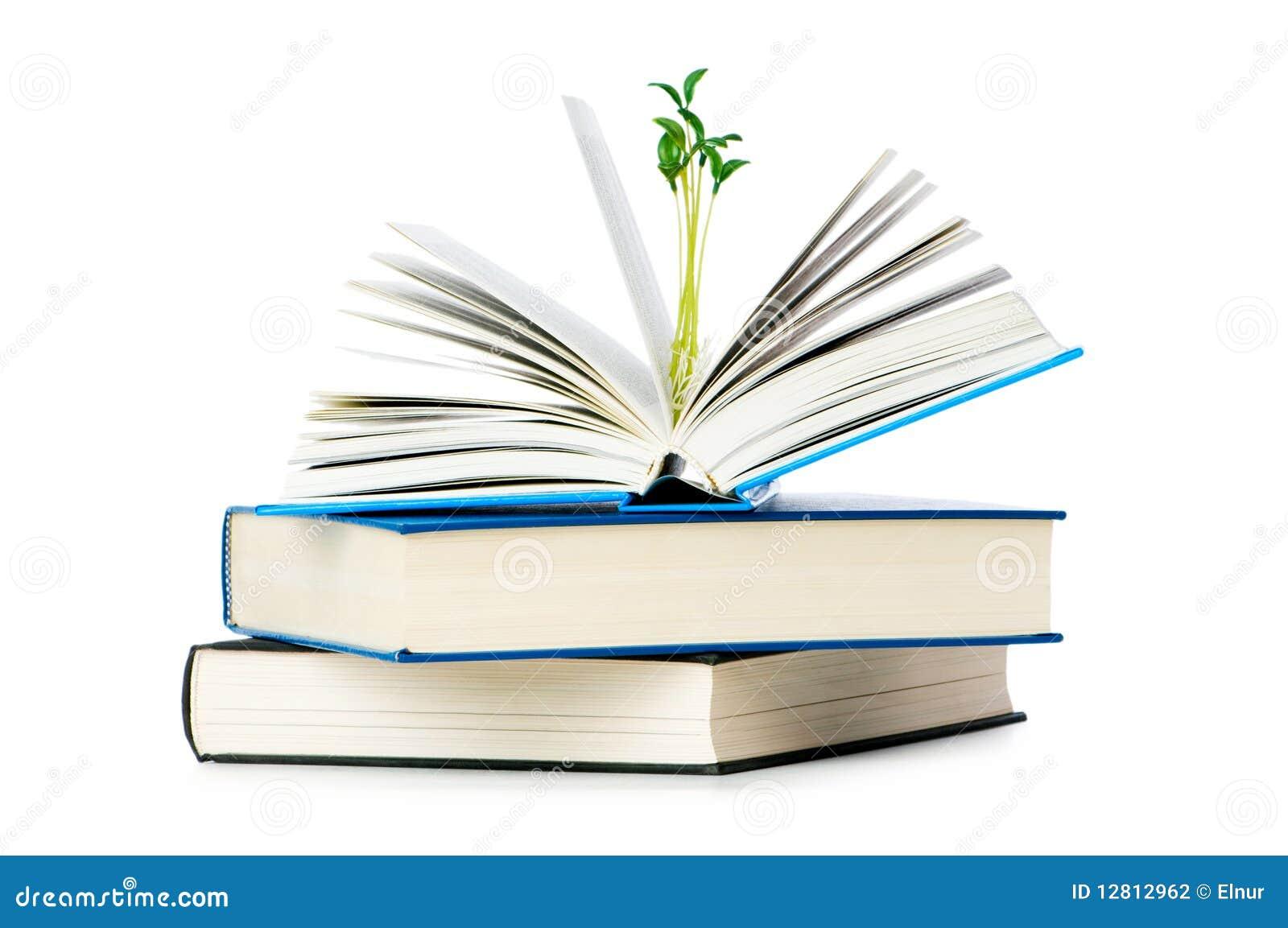 Conceito do conhecimento com livros
