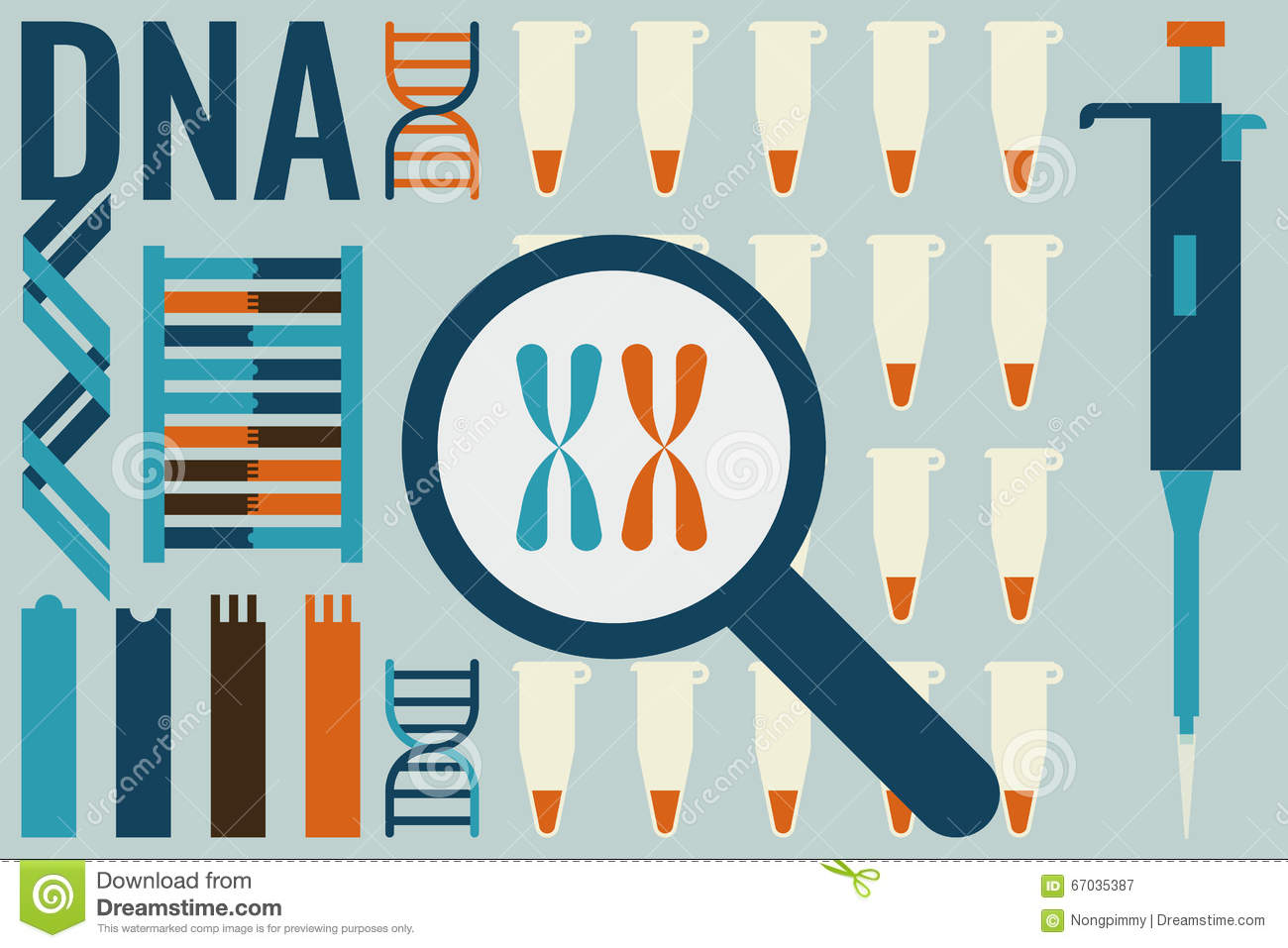 Chromosome 6 Research Project