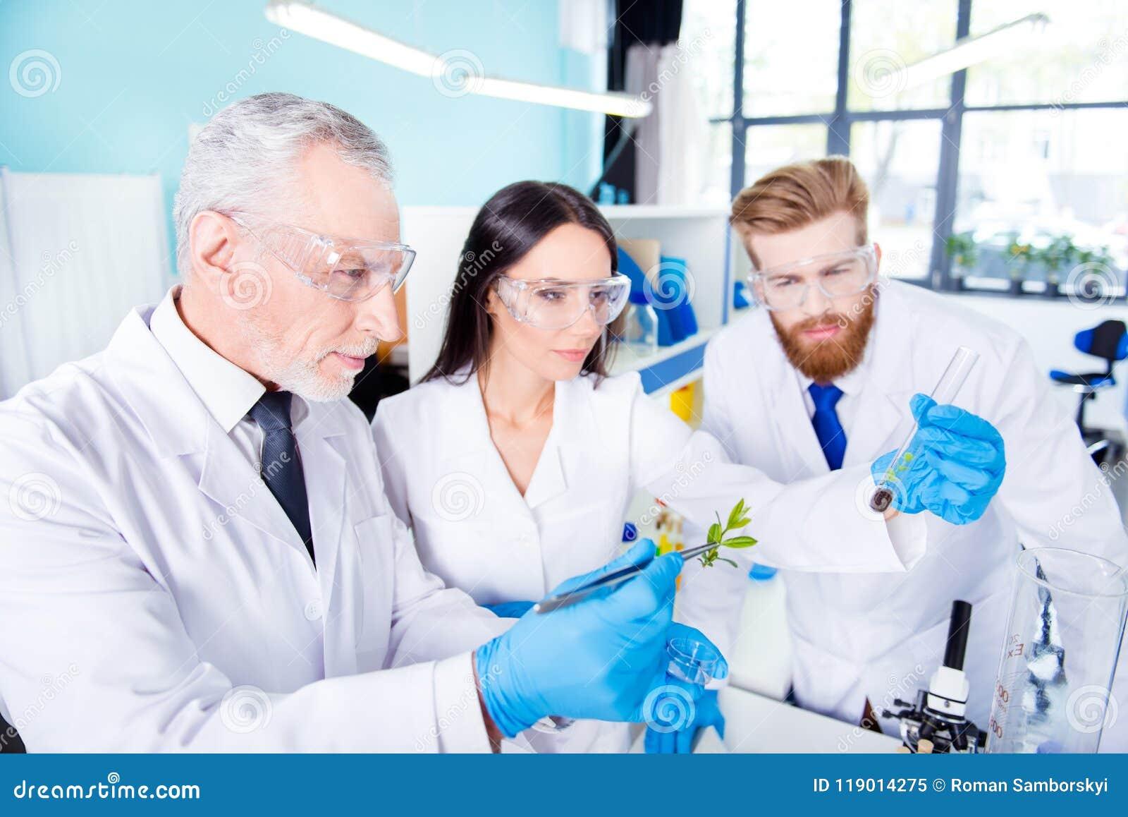 Conceito do trabalho da equipe Três trabalhadores do laboratório são ckecking
