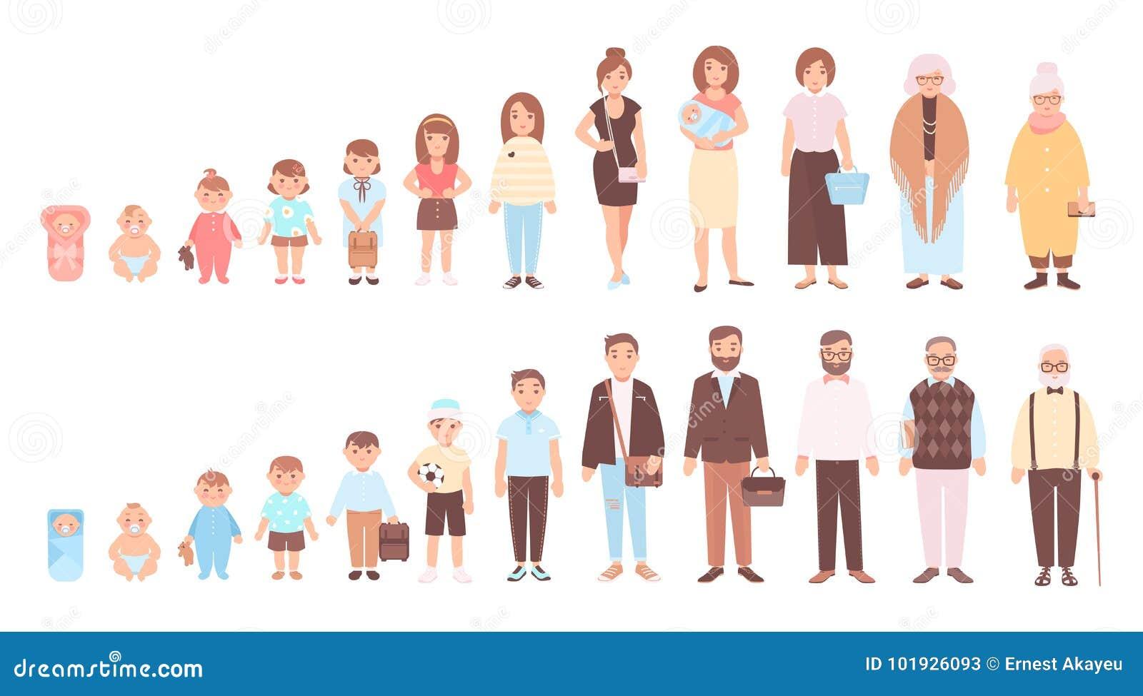 Conceito dos ciclos de vida do homem e da mulher Visualização das fases do crescimento do corpo humano, do desenvolvimento e do e