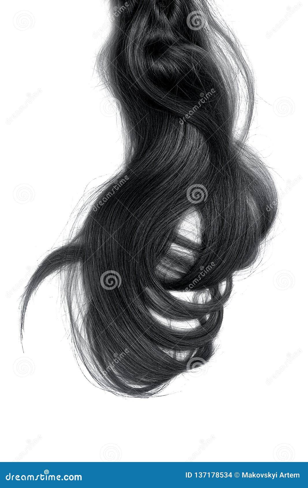 Conceito mau do dia do cabelo Rabo de cavalo longo, preto, bagunçado