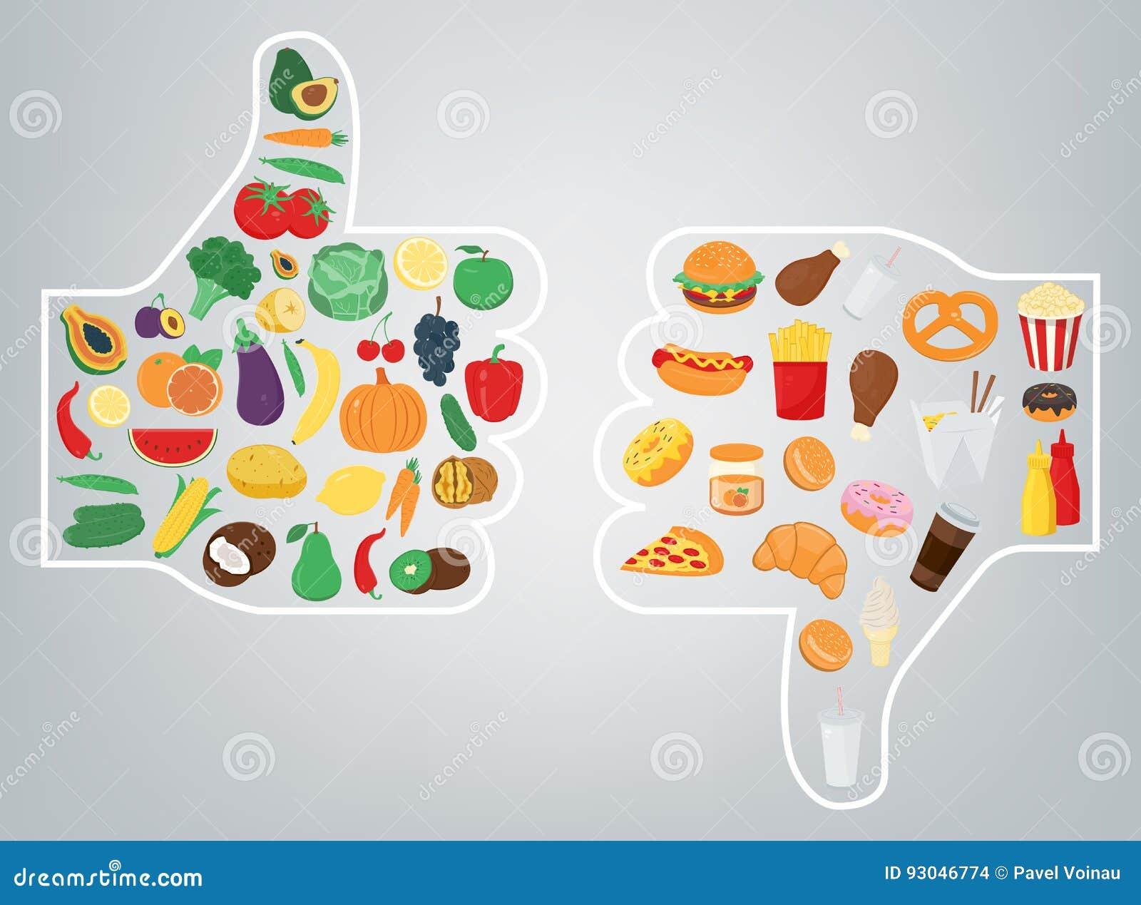 Conceito saudável do estilo de vida Nós somos o que nós comemos Vetor
