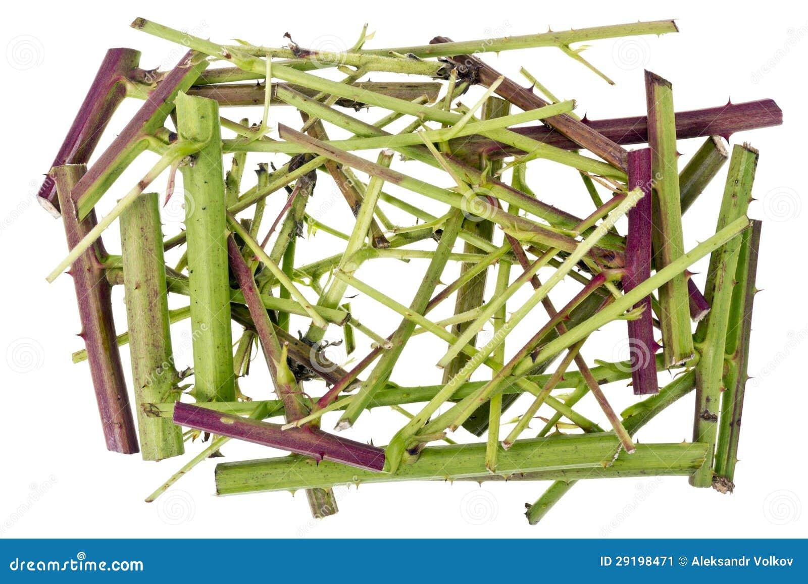 Conceito verde afiado do caos