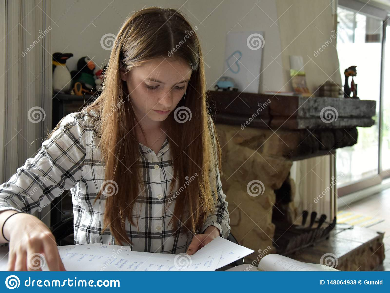 Teenage girl doing her maths homework