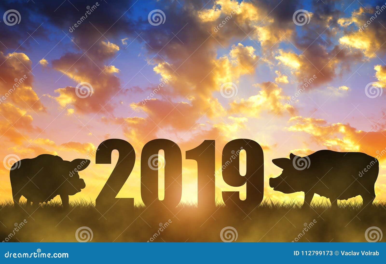 Concept 2019 chinois de nouvelle année