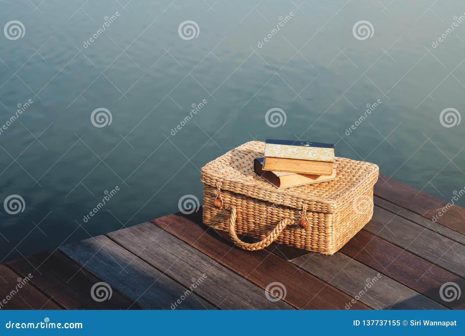 Concept débranché par vie Livre de lecture par la rivière