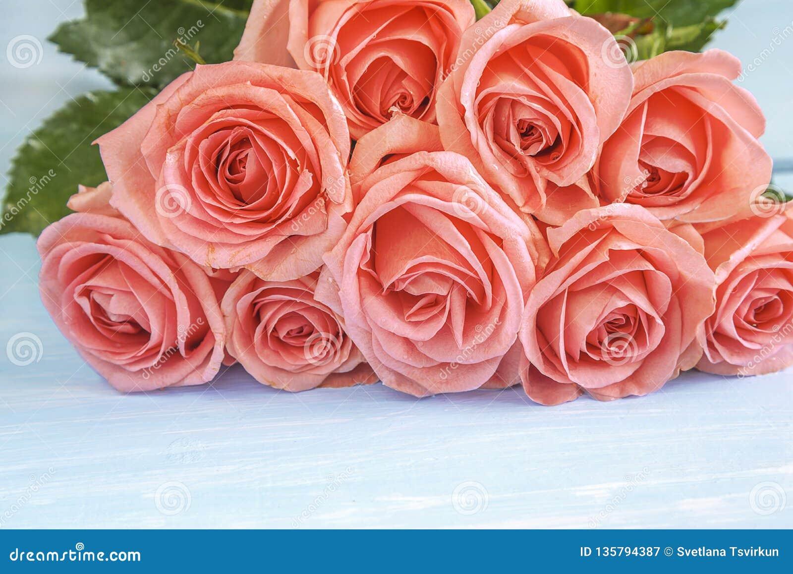 Concept de célébration avec le beau groupe de fleurs roses roses