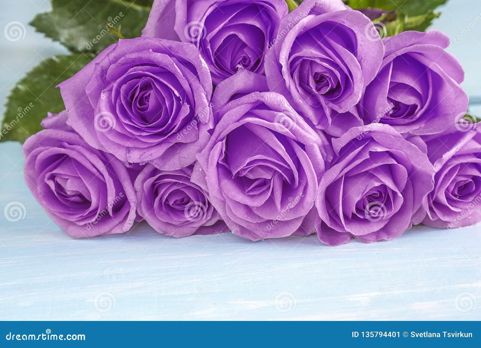 Concept de célébration avec le beau groupe de fleurs roses pourpres