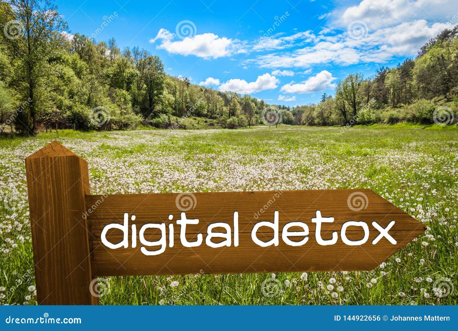 Concept de Detox de Digital