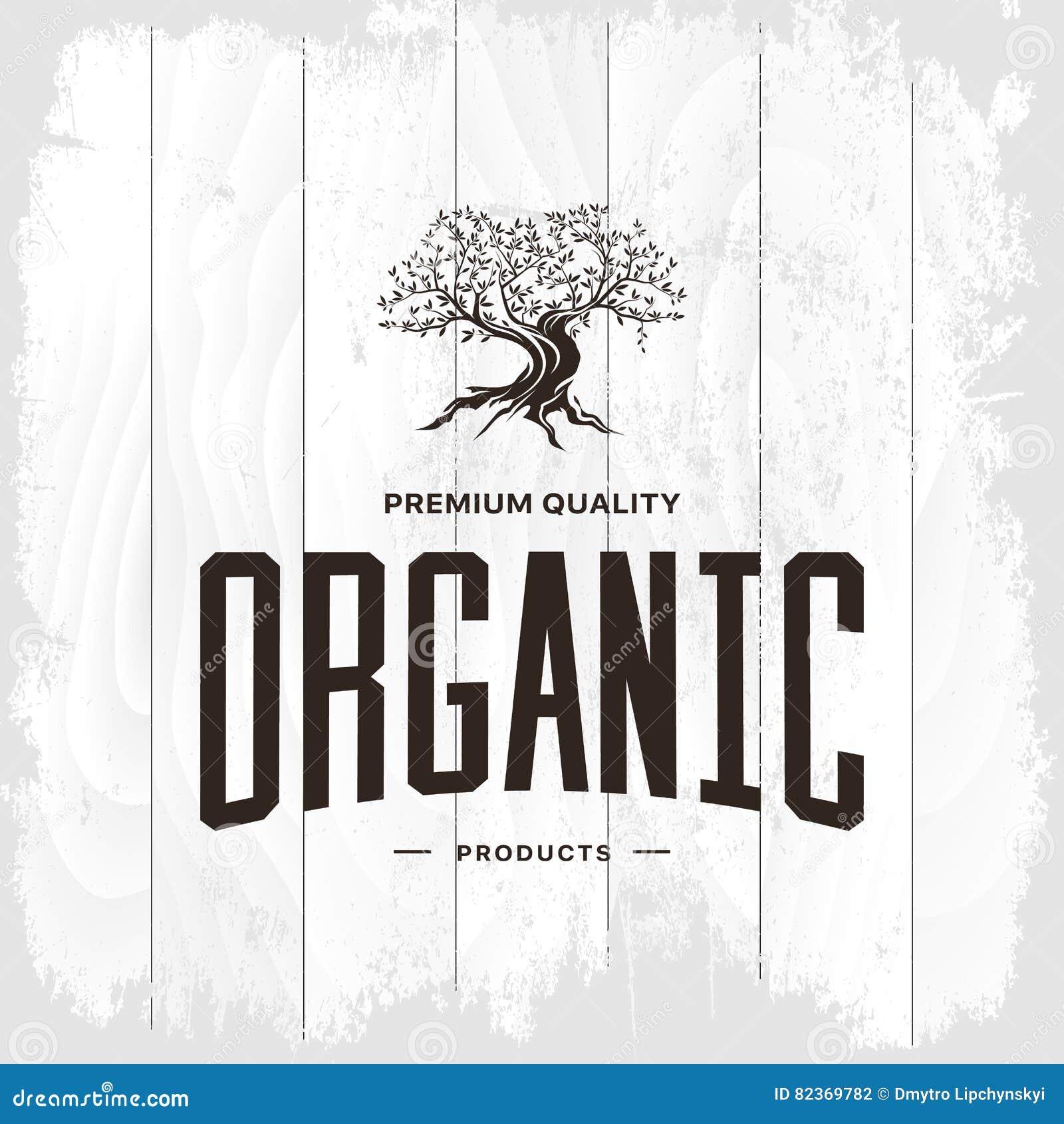 Concept de logo de vintage d olivier d isolement