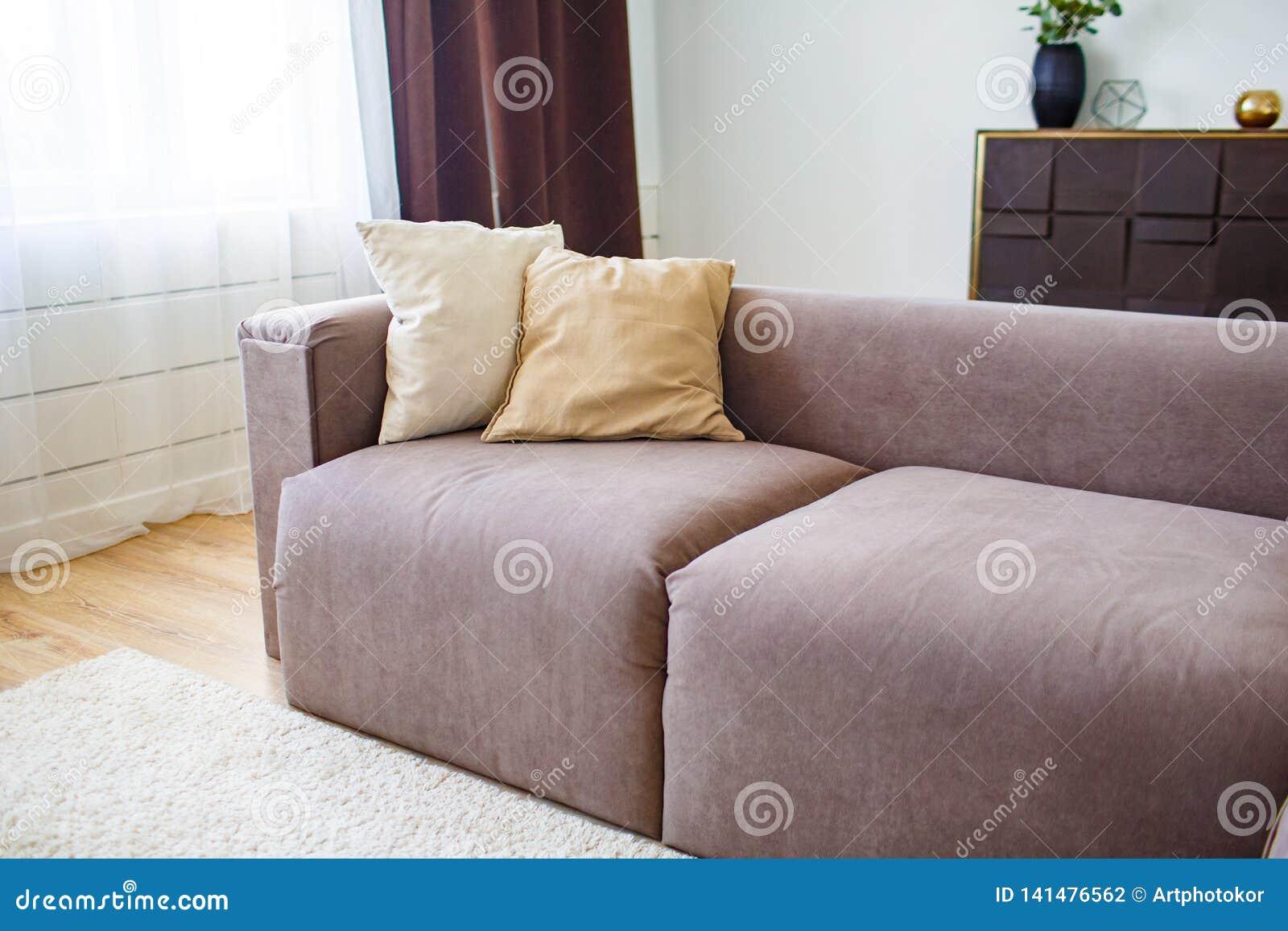 Concept de relaxation Cushiong deux se trouvant sur le sofa brun dans l intérieur moderne