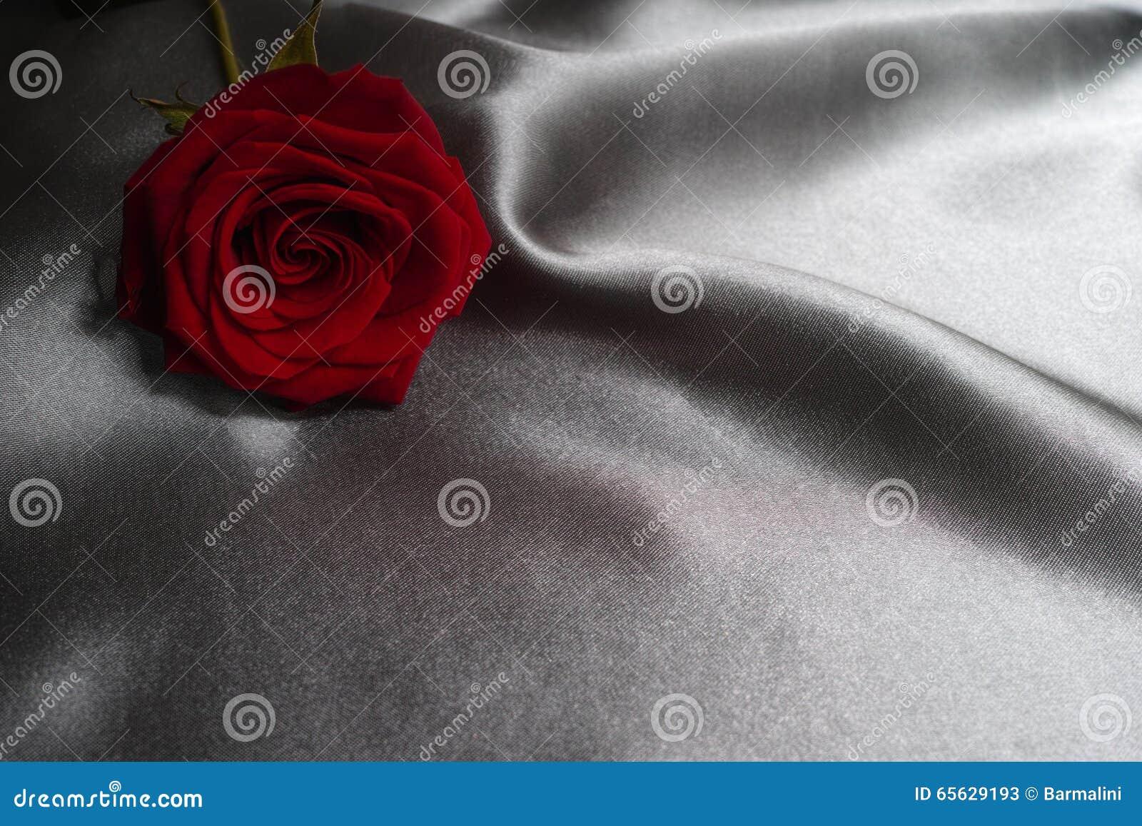 Concept de Saint-Valentin, concept de jour de mères, rose de rouge sur le fond gris en soie