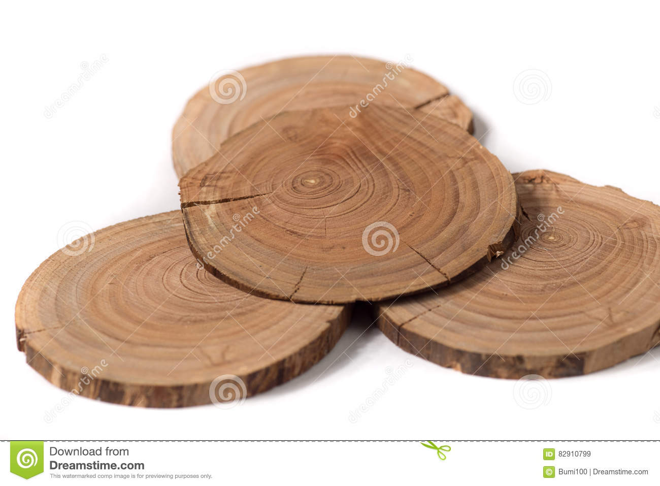 The Concept Dendrochronology Tree Trunks Clearly Visible
