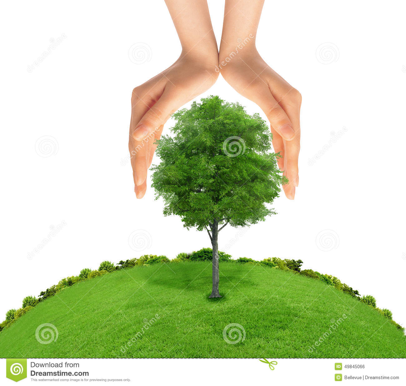 Nature Ecology: Concept Of Human Hand Protecting Green Tree. Stock