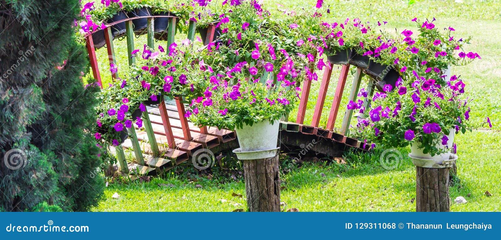 Concept And Idea Cozy Home Flower Garden On Summer Stock