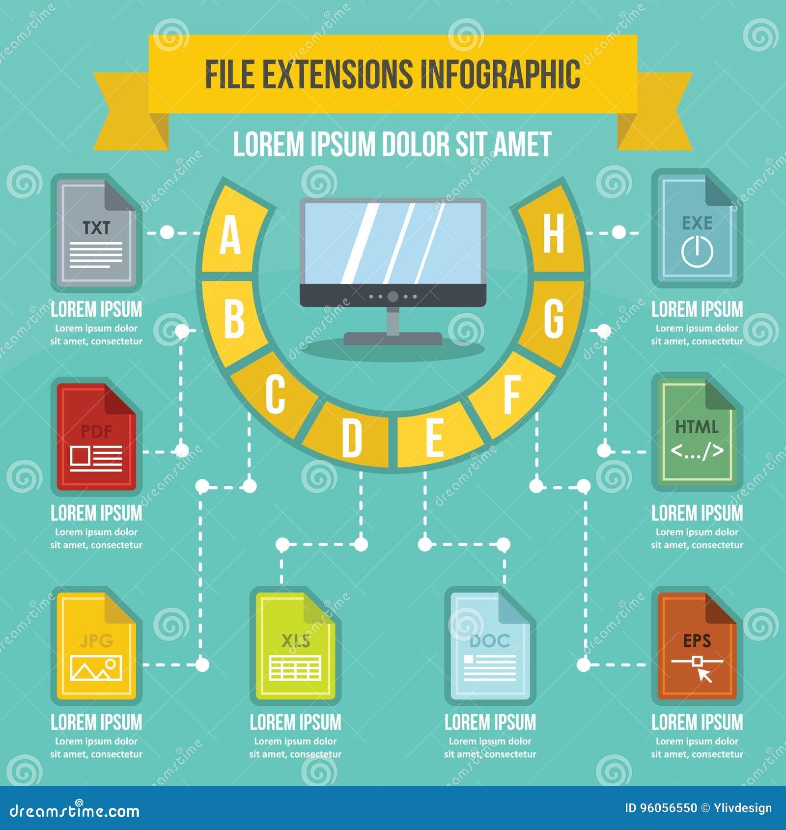 Concept infographic d extensions du fichier, style plat