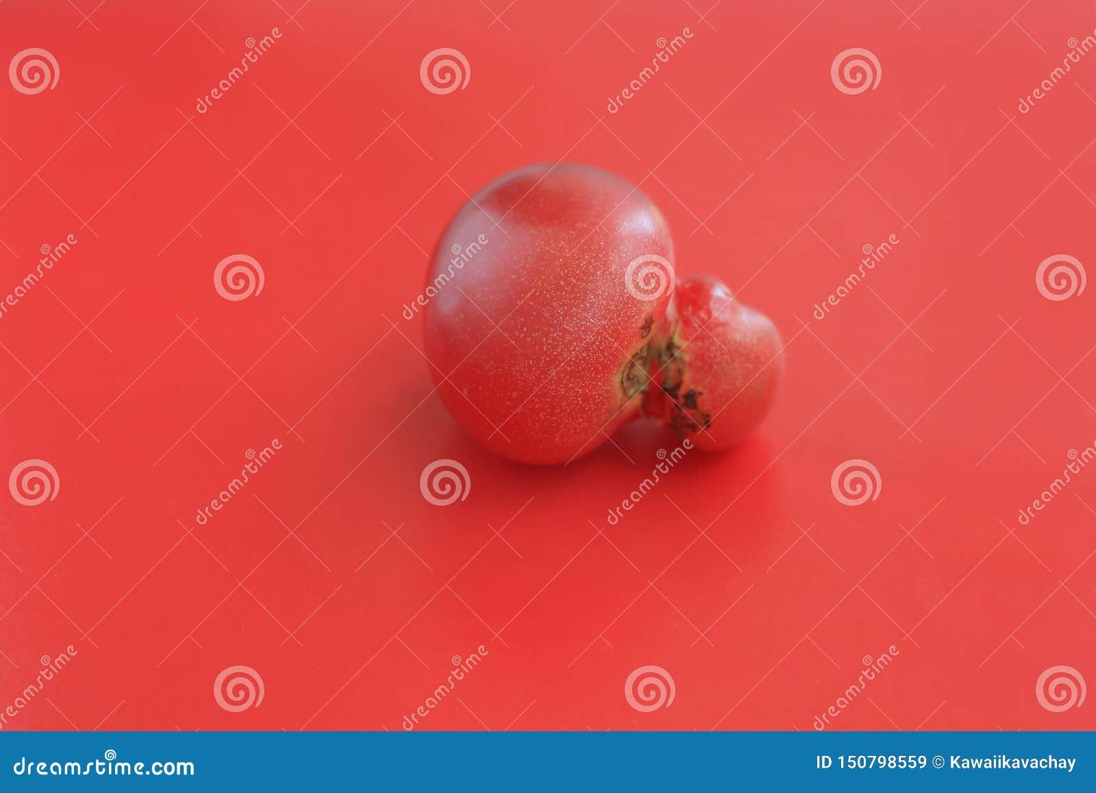 Concept laid de nourriture, tomate déformée simple sur le fond rouge, l espace de copie