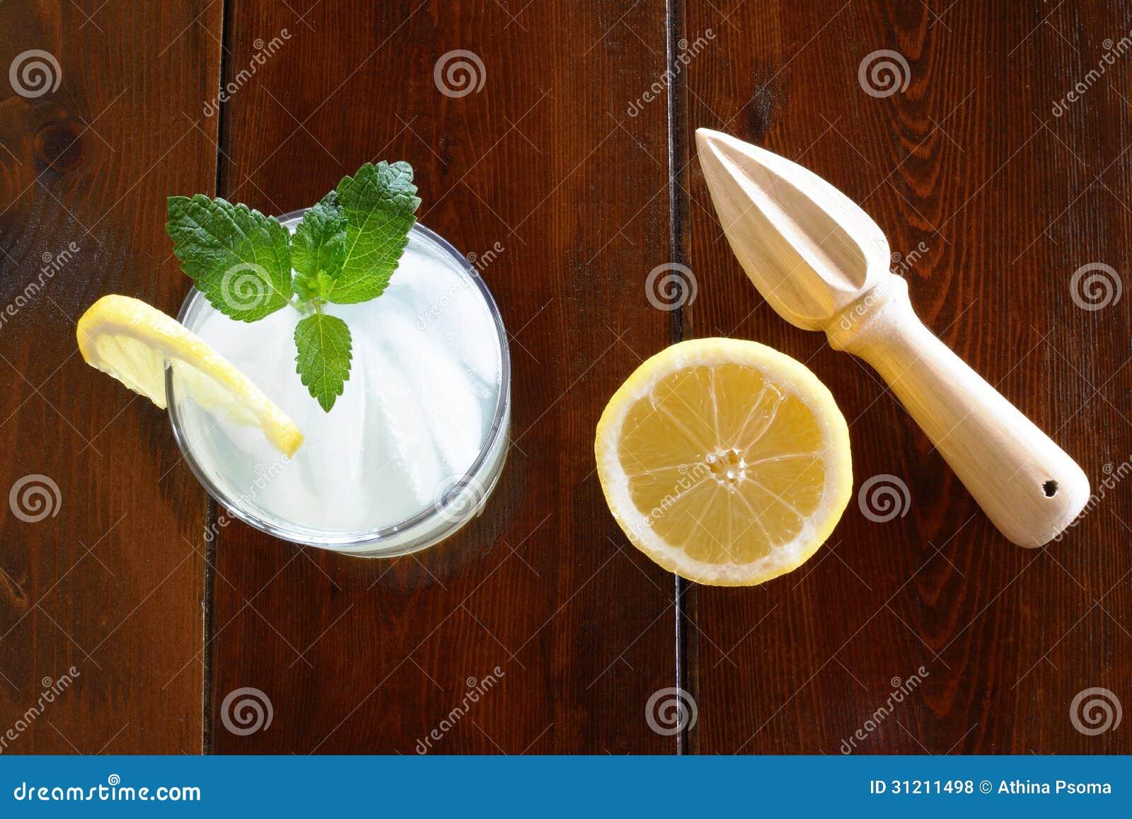 Squeezers lemonade business plan