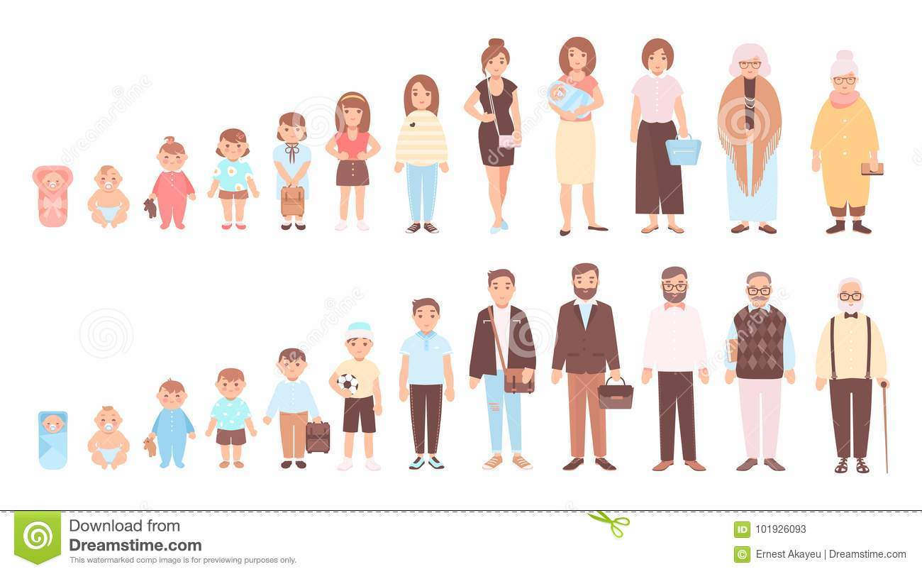 Concept of life cycles of man and woman. Visualization of stages of human body growth, development and aging - baby