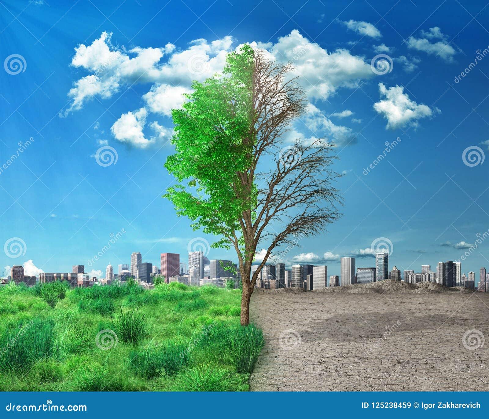 Half Alive And Half Dead Tree Sta Stock Illustration Illustration