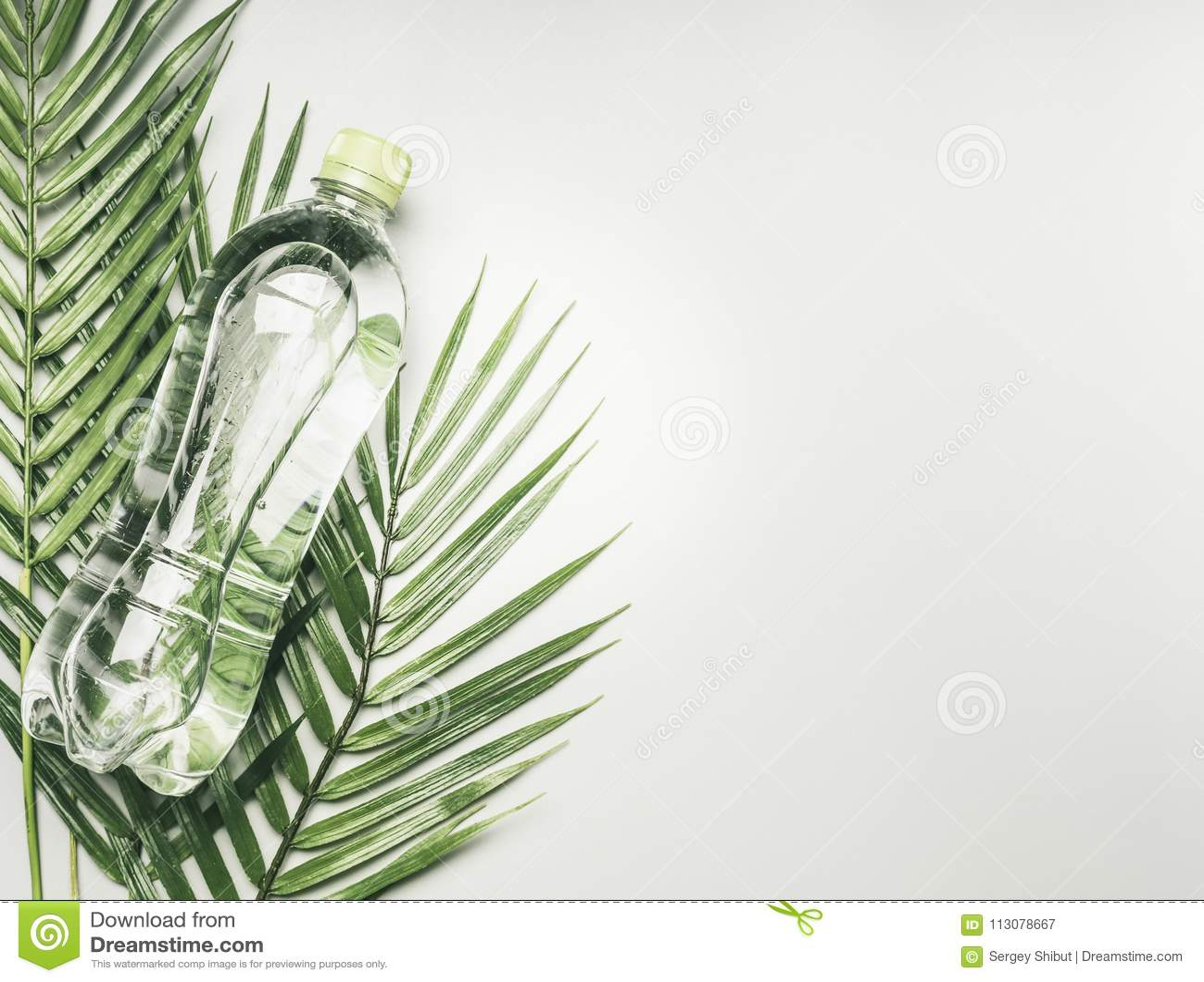 Concept sportlevensstijl, transparante fles met water en groen deksel tegen de achtergrond van tropische installaties, ruimte voo