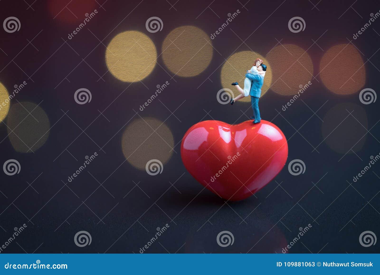 Concept van de huwelijks het zoete romantische nacht, gelukkig miniatuurpaarhol