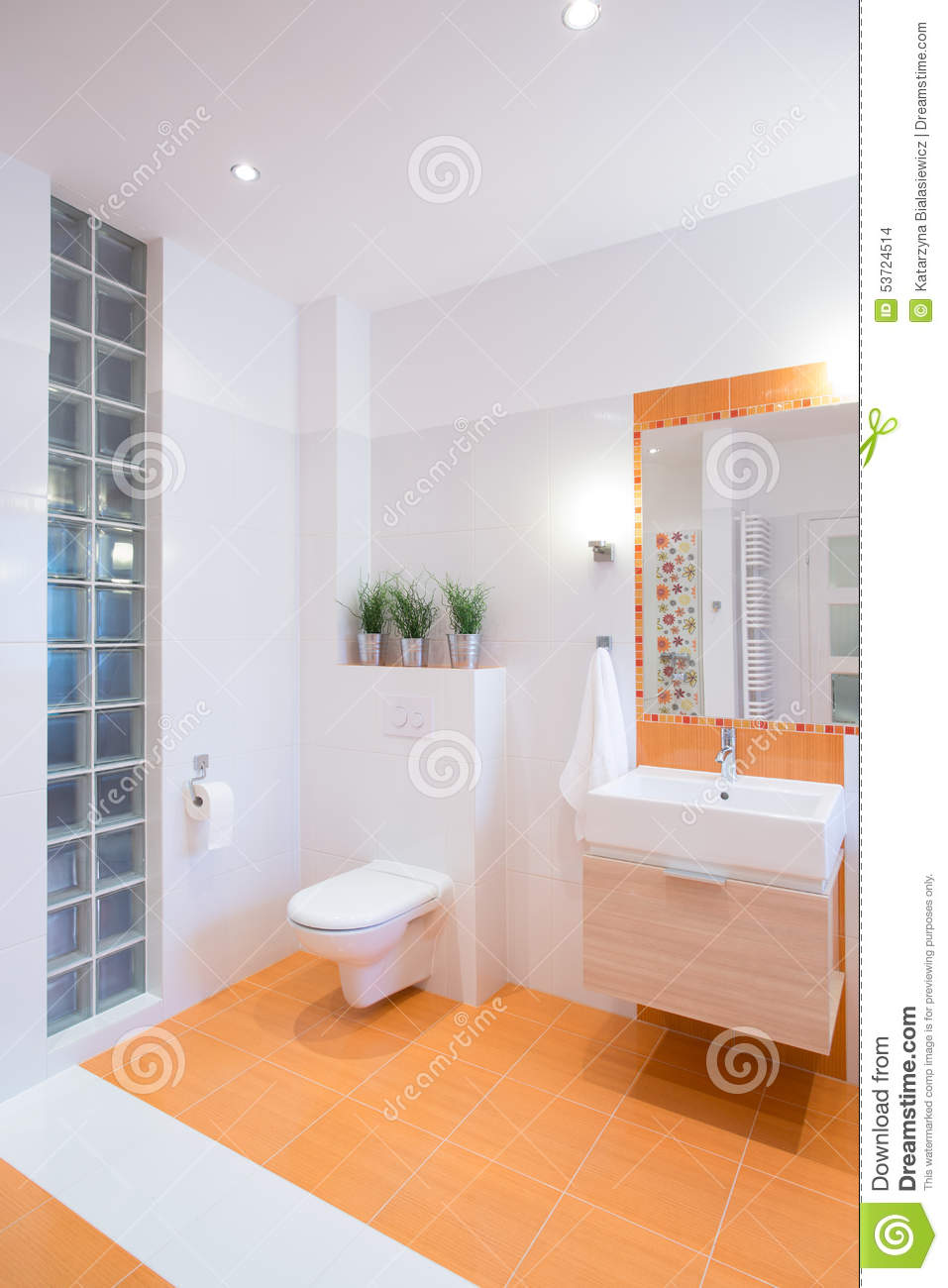 Conception color e de salle de bains photo stock image for Outil de conception salle de bain