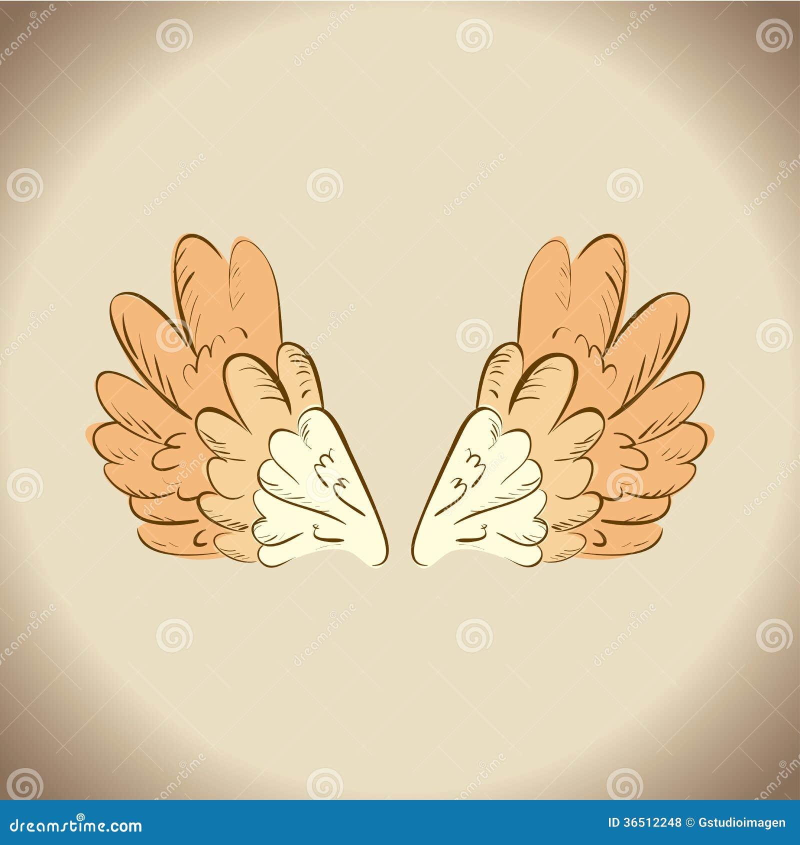 Conception d ailes