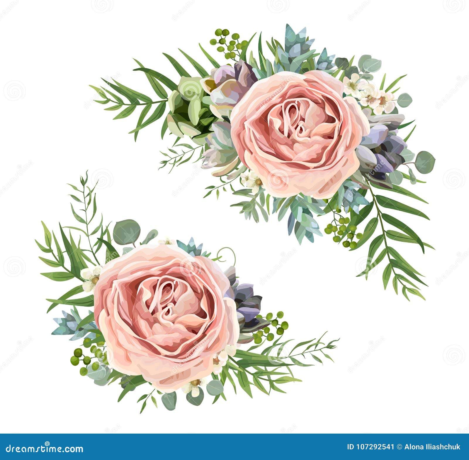 Conception de bouquet floral de vecteur : wa de Rose de lavande de pêche de rose de jardin