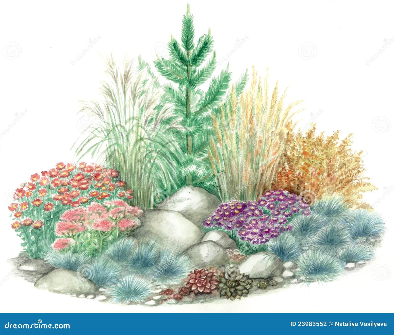 Conception De Jardin De Jardin De Rocaille Illustration