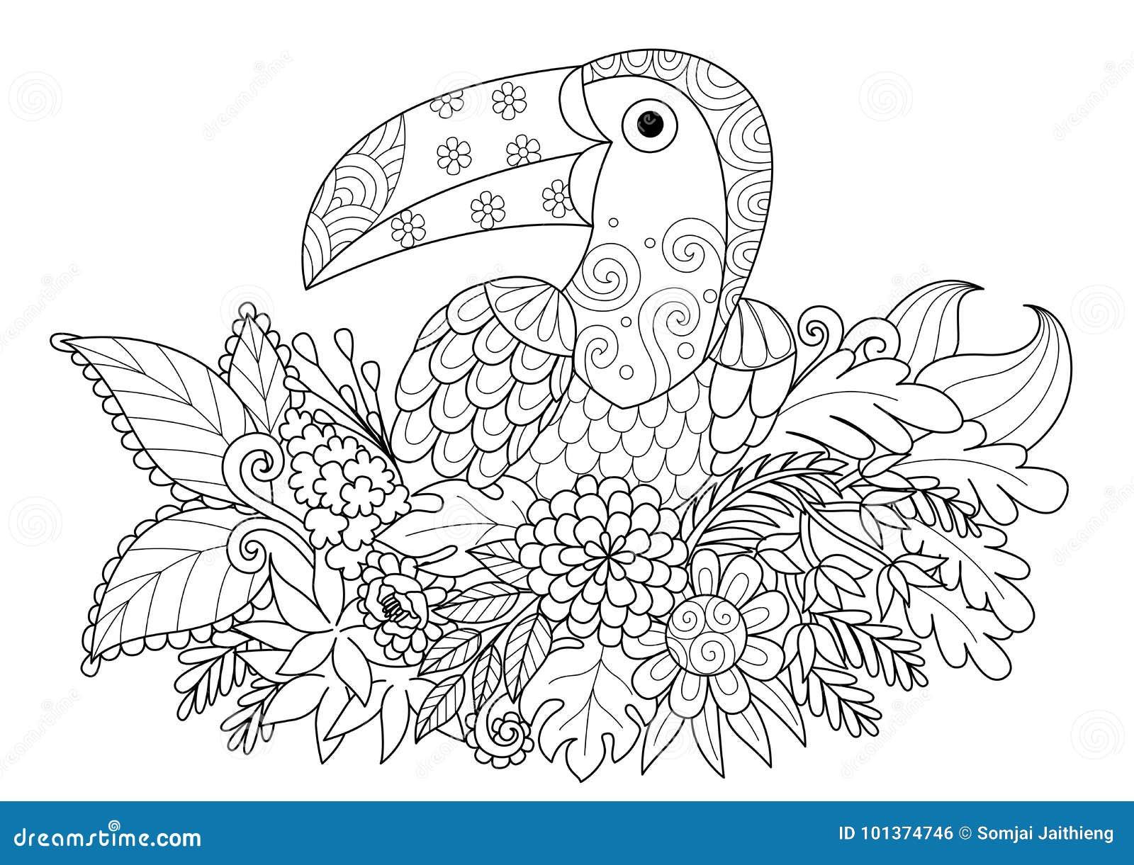 Conception de sch ma d 39 oiseau de toucan se reposant sur la branche pour la page adulte de livre - Coloriage toucan a imprimer ...