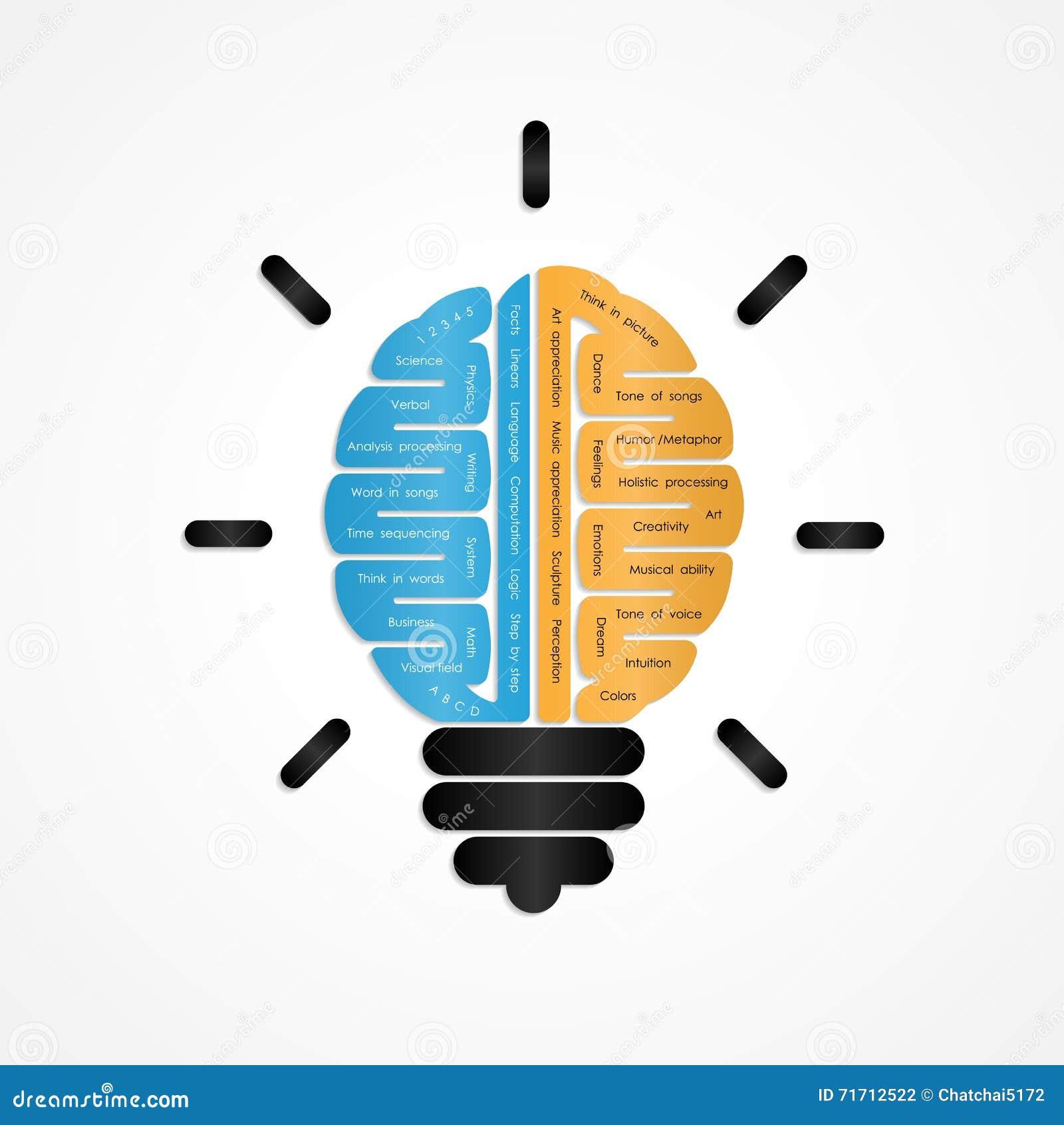 Conception de vecteur de logo de cerveau droit et gauche Cerveau créateur