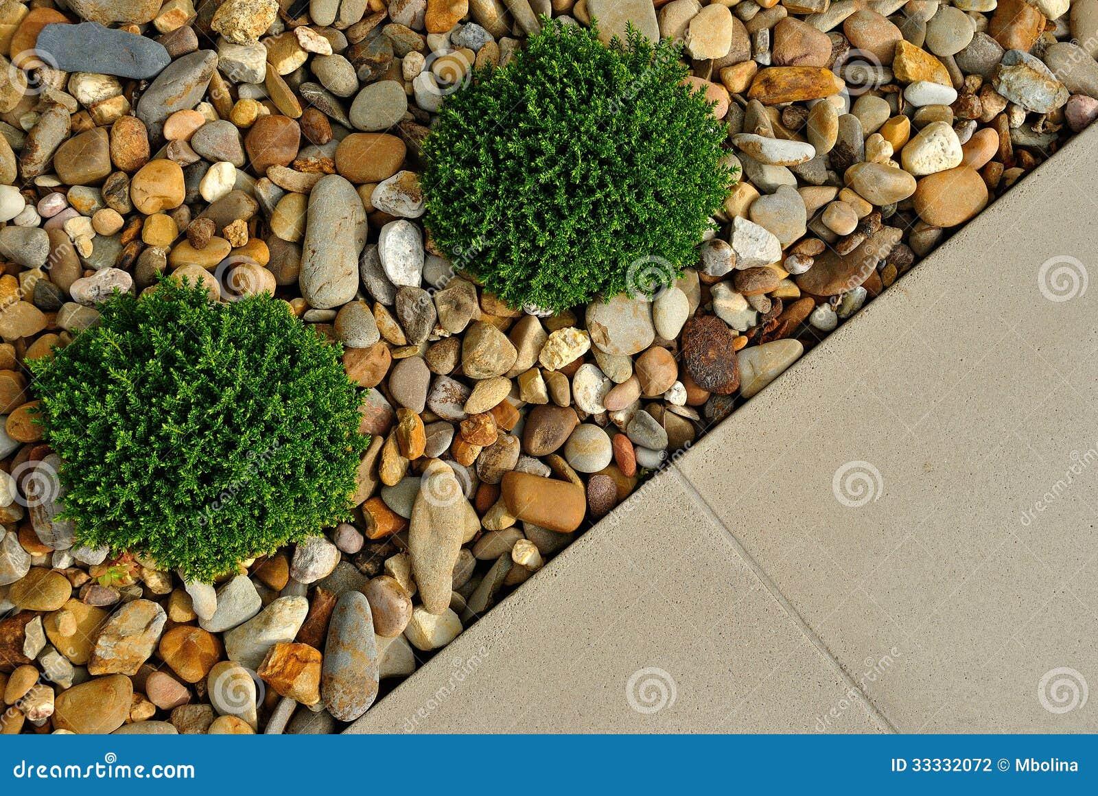 Conception ext rieure de jardin de paysage photographie for Conception de jardin