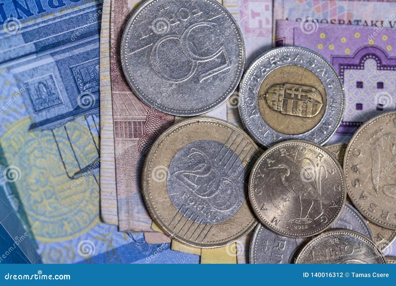 Conception hongroise d ensemble de billets de banque et de pièces de monnaie de forint