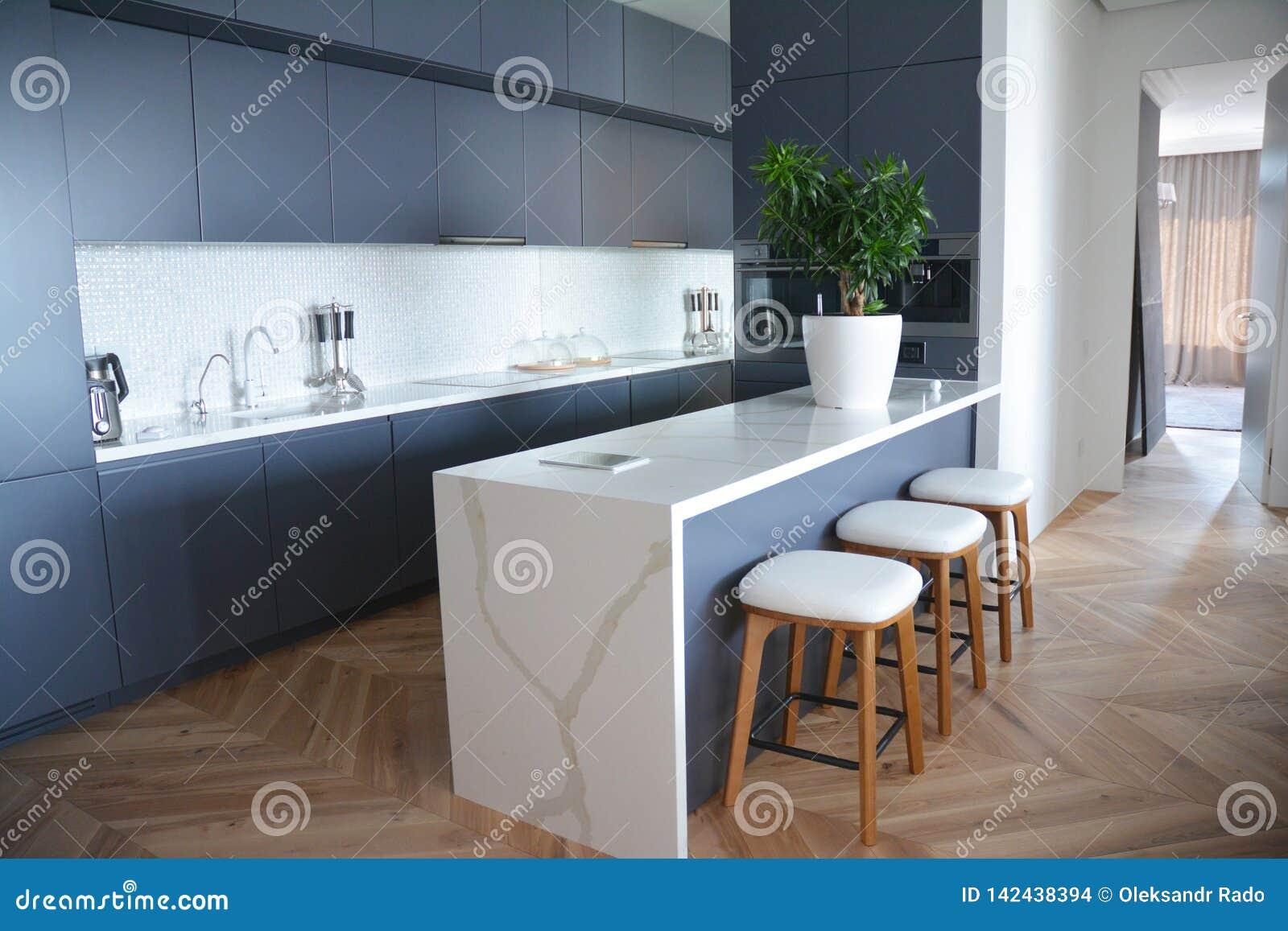 Conception intérieure de cuisine moderne avec des planchers en bois dur dans la maison de luxe